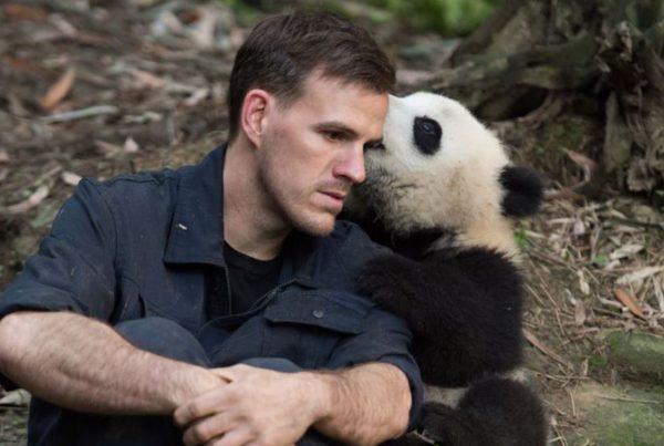 Pandas 3D IMAX, The Departure Lounge
