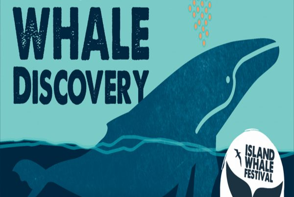 philip-island-whale-festival